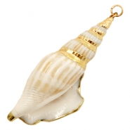 Shell bead specials Whelk Cream Beige-Gold
