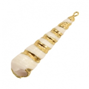 Shell bead specials Horn Snail Beige-Gold