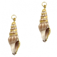 Shell bead specials Whelk Beige-Gold