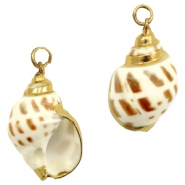 Shell bead specials Whelk Cream Brown-Gold