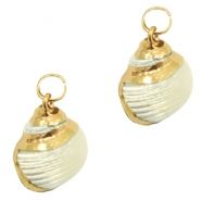 Shell bead specials Whelk Pearl Beige-Gold