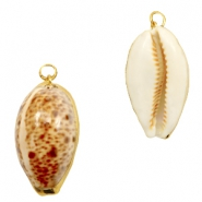 Shell bead specials Kauri Beige Brown-Gold