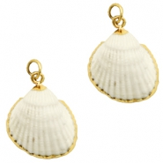 Shell bead specials Kockel Off White-Gold