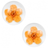 Basic cabochon with dried flowers 12mm Orange