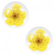 Basic cabochon with dried flowers 12mm Yellow