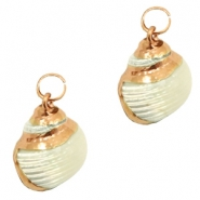 Shell bead specials Whelk Pearl Beige-Rose Gold