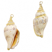 Shell pendant specials Whelks Cream Beige-Gold