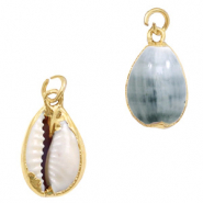 Shell pendant specials Cowrie Greenish Grey-Gold
