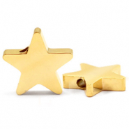 Stainless steel beads star Gold