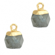 Natural stone charms hexagon Fossil Grey-Gold