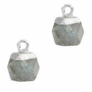 Natural stone charms hexagon Fossil Grey-Silver