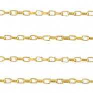 Stainless Steel findings belcher chain Venezia box chain Gold