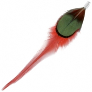 Duo feathers Deep red-dark green