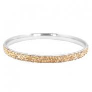 Bracelet stainless steel with strass stones Silver-champagne gold