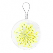 Charms with dried flowers 20mm Yellow