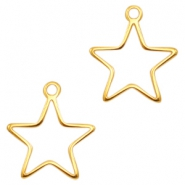 DQ metal charms Star Gold (nickel free)
