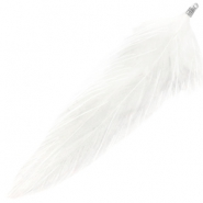Feathers plush White